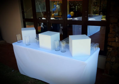 30cm Plinths drink table