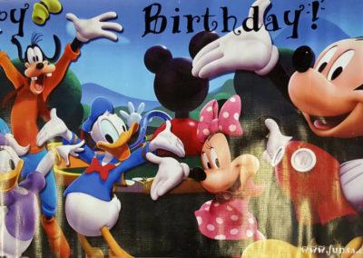 Banners - Disney 1000px