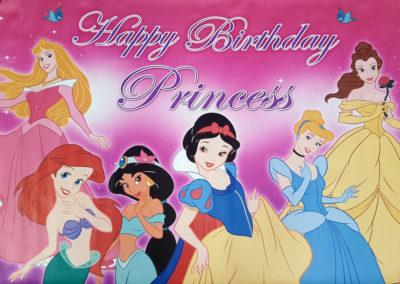Banners - Disney Princesses 2 1000px