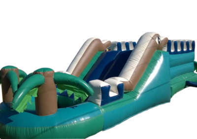 Inflatables - Dolphin Wet Slide 1000px