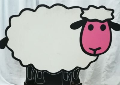 Photoboards - Sheep