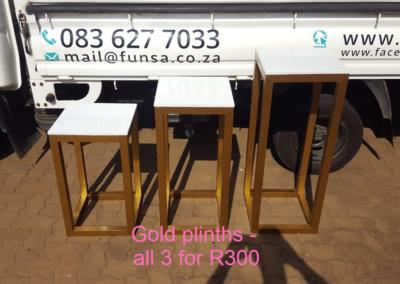 Gold Frame Plinths